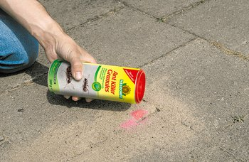 Neudorff's AntFree Ant Killer Granules can be scattered dry straight from the pack