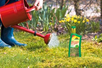 Fight moss in the lawn without harming grass or staining surrounding stone areas.
