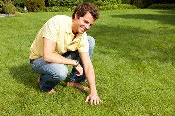 Using the right products at the right time result in an enjoyable and healthy lawn.