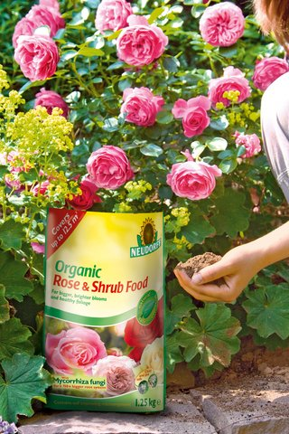 Organic Rose & Shrub Food with soil improving microorganisms and mycorrhiza fungi for a root system up to 150 x bigger.