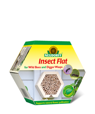 Insect Flat for Wild Bees and Digger Wasps