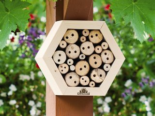 Insect Flats for Mason Bees
