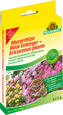 Mycorrhiza Root Enlarger – Ericaceous plants
