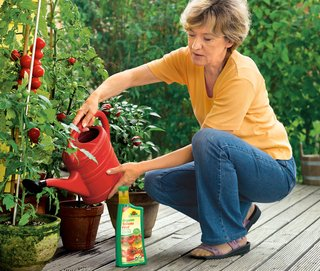... Alternatively use liquid fertiliser which is particularly handy for pot plants.