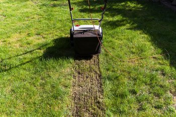 Scarifying is the exception in caring for lawns, not the rule!