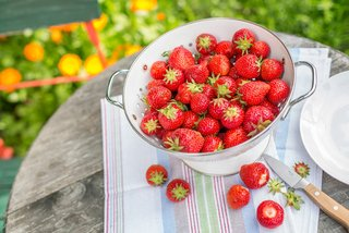 Strawberries need a balanced organic fertiliser.