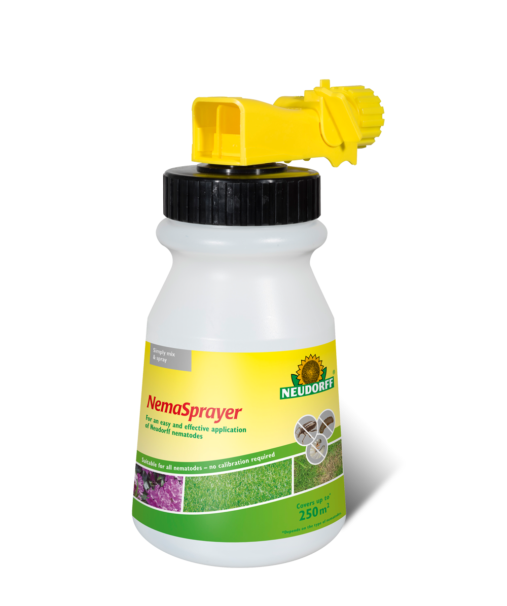 indoor house plant watering hose html with Neudorff Nemasprayer on Neudorff Nemasprayer also 40 Foot Indoor Outdoor Coil Hose also Gardena Connector Set moreover 4 5l Stainless Steel Watering Can 14689075886984997 furthermore Domino Peace Lily Plant Spathyphyllium New Easy 6 Pot Reviews  pare Deals.